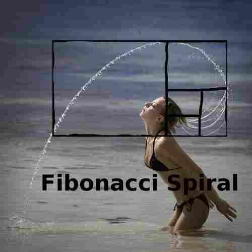 spiral-fibonacci
